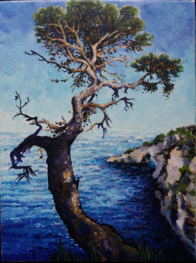 Tree over a bay